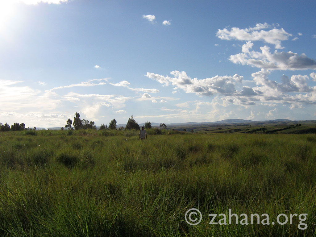 land donated to build the school in Fiarenana Madagascar