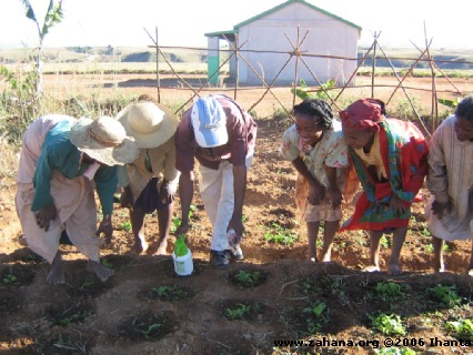 Planting lesson from agricultural teacher