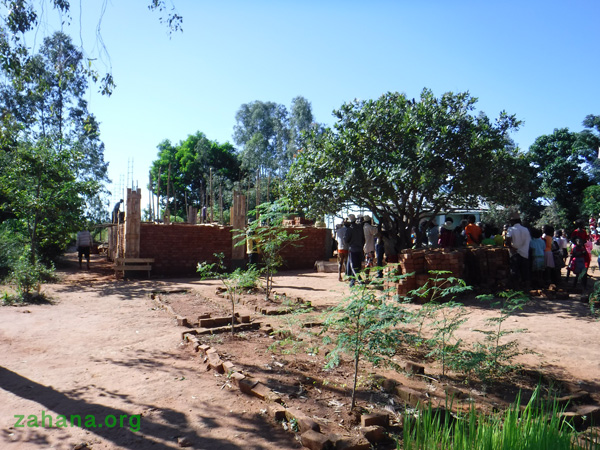 Moringa trees in a Madagascar schoolyard