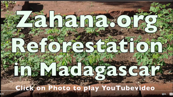 A Reforeatation video on YouTube by zahan