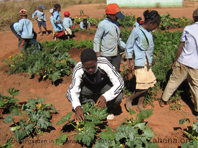 The teacher with his students in the school garden in Madagascar