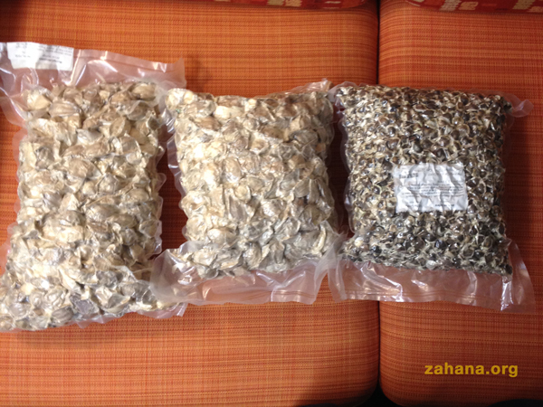 Moringa seedfs for the villages in Madagascar - zahana