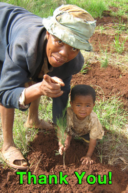 thank for the supporting tree planting in madagascar