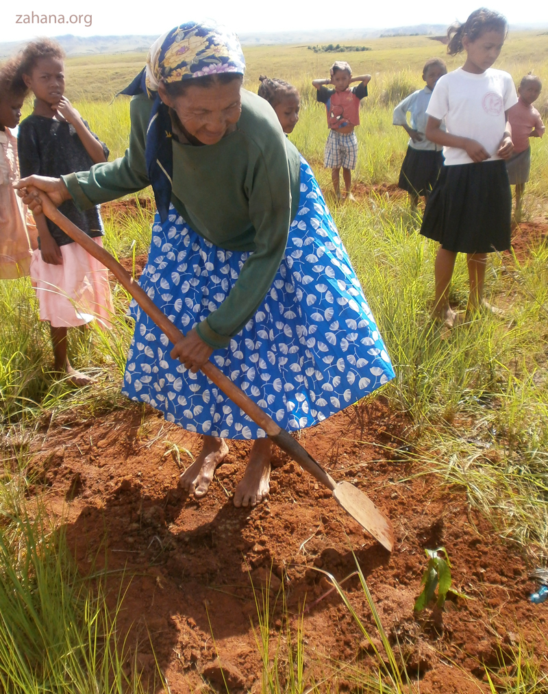 woman planting a seedling in Madagascar in 2013